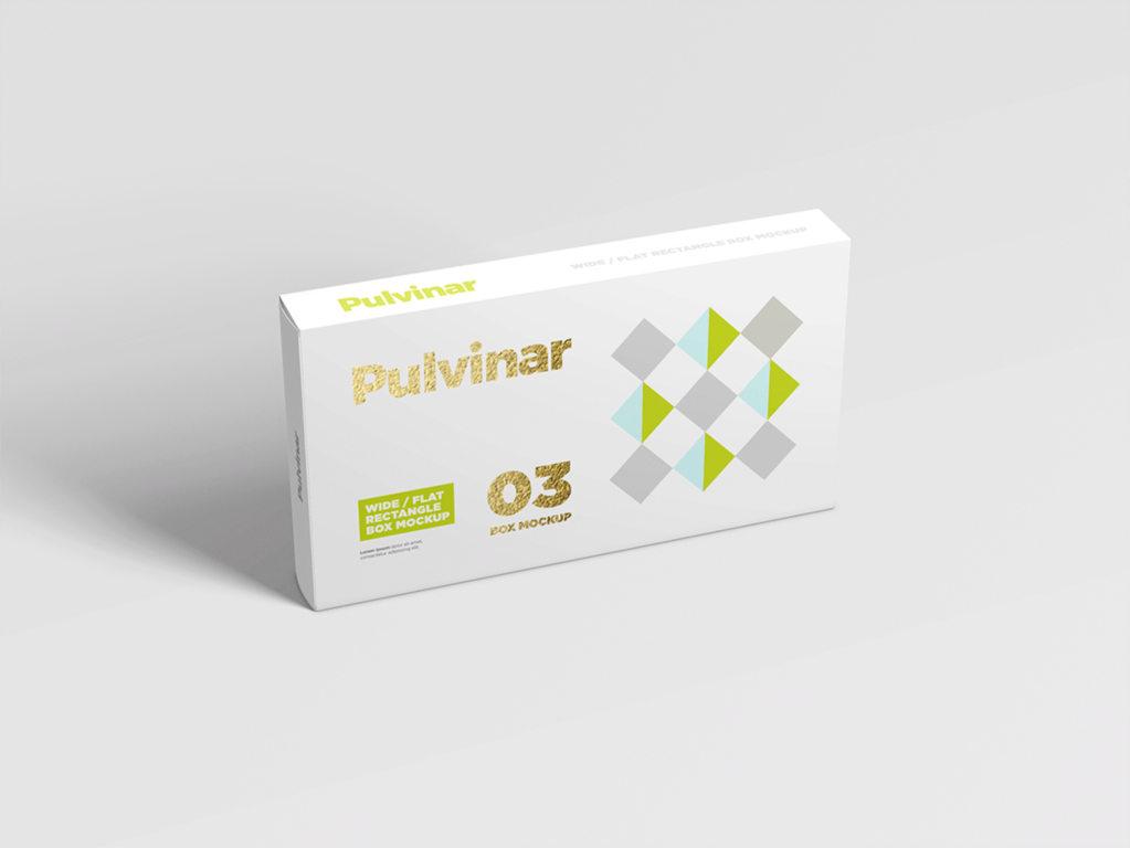扁宽形状包装盒药盒样机模版PS素材贴图box packaging mockup wide flat rectangle